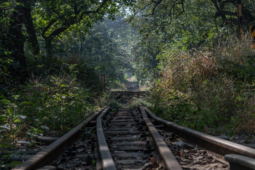 Perspektive Mannsein, einssein, Rilke, vom Fenster fällt, Traum leben, Gott, Schöpfung, Talent, Stärke, Schwäche,