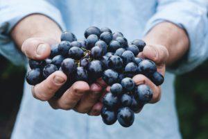 Befiehl den letzten Früchten voll zu sein; gieb ihnen noch zwei südlichere Tage,